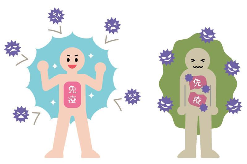 免疫力が高い人と免疫力が弱い人のイラスト